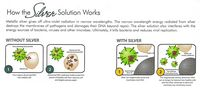 Silver Shield interferes with the energy sources of bacteria, viruses and other microbes.